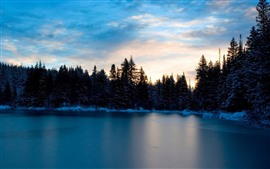Lake, trees, snow, winter, sunset, dusk