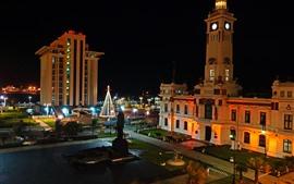墨西哥,韋拉克魯斯州,城市,夜晚,建築物,燈光