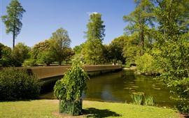 Preview wallpaper Park, trees, river, bridge, meadow, green