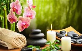 Phalaenopsis, pedras, velas, toalha, SPA