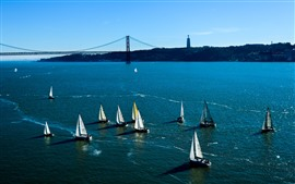 Preview wallpaper Sailboats, blue sea, bridge, USA