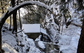Preview wallpaper Winter, snow, trees, forest, hut