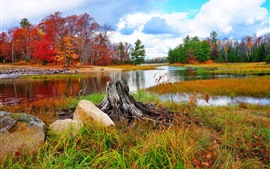 Preview wallpaper Beautiful nature landscape, trees, river, grass, autumn