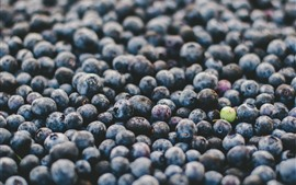 Preview wallpaper Berries, fruit, many blueberries, water droplets