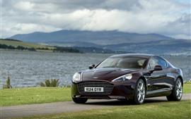 Carro Aston Martin de cor marrom, rio, grama