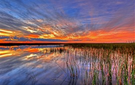 Florida, EE.UU., Everglades, pantano, agua, hierba, puesta de sol, nubes