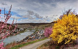 Allemagne, rivière, fleurs, arbres, ville