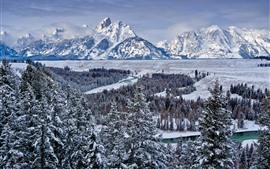 Parque Nacional Grand Teton, árvores, neve, montanhas