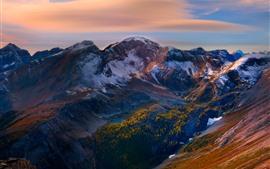 Montanhas, pico, neve, árvores, crepúsculo
