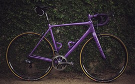 Preview wallpaper Purple bike