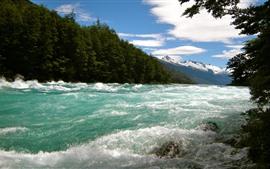 Río, árboles, naturaleza