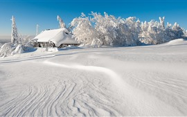 Preview wallpaper Thick snow, trees, house, white world, winter