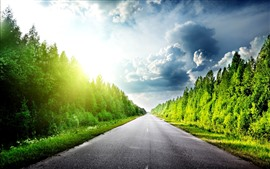Preview wallpaper Trees, green, road, sunshine, clouds, glare