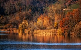 Preview wallpaper Autumn, trees, river, nature scenery