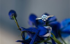 Preview wallpaper Diamond ring, blue flowers, hazy
