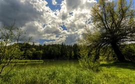 Preview wallpaper France, trees, green, pond, clouds, sky, summer