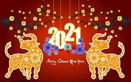 Preview wallpaper Happy New Year 2021, ox, flowers, red background