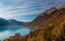 Lake, mountains, trees, village, autumn