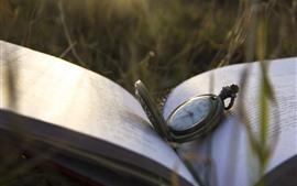 Reloj de bolsillo, hierba, libro