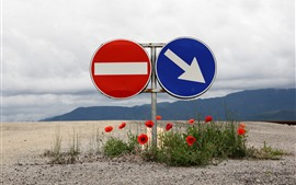 Preview wallpaper Road sign, red poppy flowers