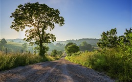 Preview wallpaper Road, trees, sun rays, village, morning