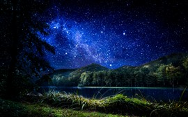 Croatia, Trakoscan, stars, grass, trees, river, night