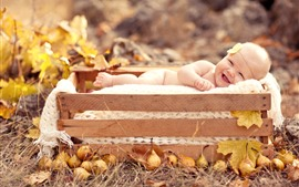 Preview wallpaper Cute baby, box, pears