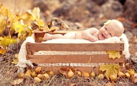 Bebê fofo, caixa, peras