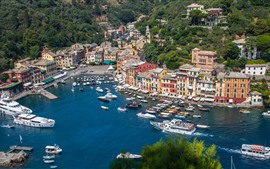 Preview wallpaper Italy, Portofino, bay, sea, boats, yachts, houses