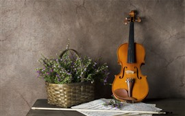 Preview wallpaper Little flowers, basket, violin, music