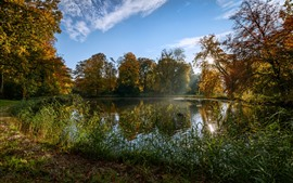 Preview wallpaper Netherlands, park, pond, grass, sunshine, autumn