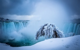 Niagara falls, waterfalls, snow, tree, winter
