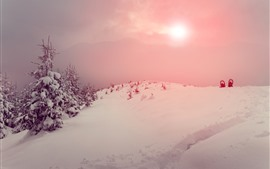 Preview wallpaper Snow, trees, winter, mountain, sky, sun, fog
