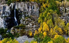 미리보기 배경 화면 폭포, 바위, 나무, 가을