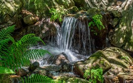 Preview wallpaper Waterfall, stream, stones, fern leaves
