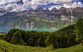 Preview wallpaper Switzerland, trees, mountains, lake, grass, cow