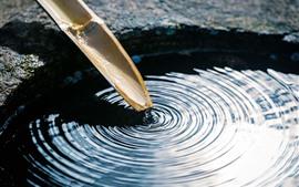 Agua, bambú, círculos de olas.