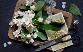 壁紙のプレビュー 白い花、はさみ、はがき、静物