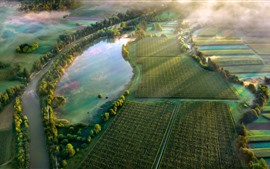 Countryside, fields, green, morning, fog, pond, sun rays