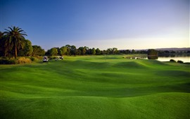 미리보기 배경 화면 녹색 잔디, 잔디, 골프, 나무, 호수
