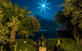 Preview wallpaper Italy, Lombardy, palm trees, moon, night, lake, light rays