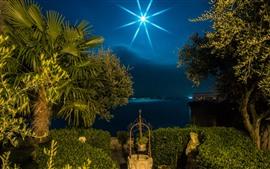 イタリア、ロンバルディア、ヤシの木、月、夜、湖、光線