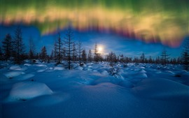 Preview wallpaper Northern lights, winter, snow, trees, evening, stars