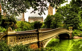 Preview wallpaper River, bridge, trees, houses, city, park