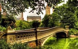 Река, мост, деревья, дома, город, парк