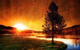 Vorschau des Hintergrundbilder Fluss, Baum, Gras, Sonnenaufgang, Silhouette, Morgen