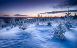 Preview wallpaper Winter, snow, trees, grass, river, clouds, dusk