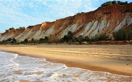 Побережье, море, пляж, пена, деревья, голубое небо