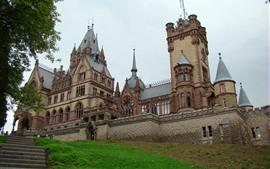 预览壁纸 龙城堡,绿草,梯子德国