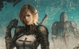 Preview wallpaper Fantasy girl, elf, tears, sword